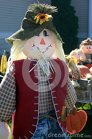 Happy Scarecrow in Sunshine