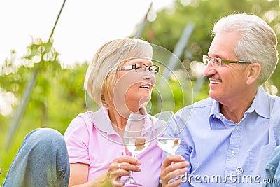 Happy seniors having picnic drinking wine