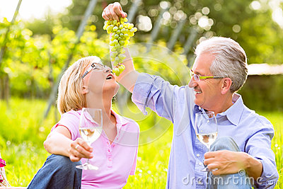 Happy seniors having picnic drinking wine