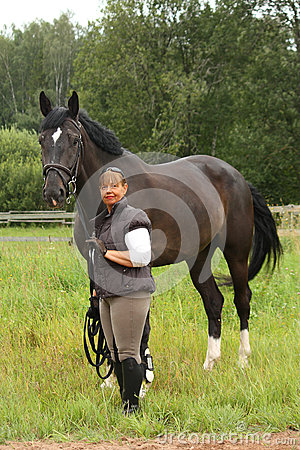 Horse Gay Tube  Best animal friend can be more then it