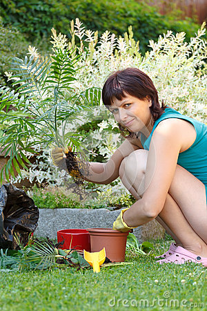 Happy smiling middle age woman gardening