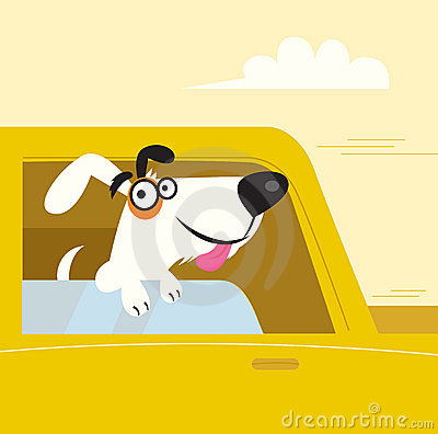 Happy white dog travelling in yellow car