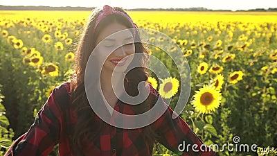 Happy woman walking in fresh sunflower field stock video