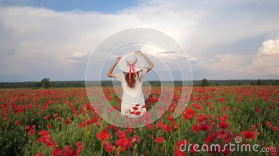 Happy Woman in white dress and hat on Poppy Flowers Field at summer, blue deep sky and clouds. Back view. Video footage stock video