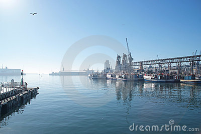 Harbor at Cape Town