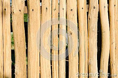 Hardwood as background
