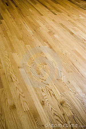 Free Hardwood Floor Stock Photos - 6428963