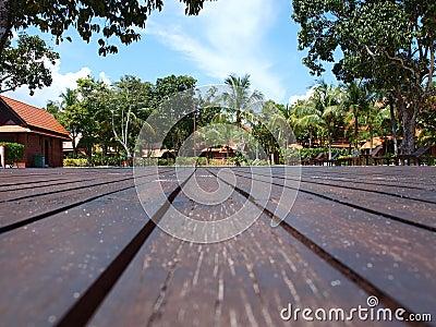 Hardwood Plank Flooring Greenery