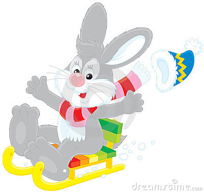 Hare driving in a sled