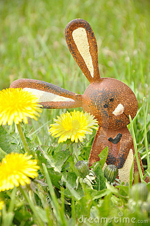 Hare in a grass