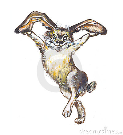 Hare (rabbit, bunny)