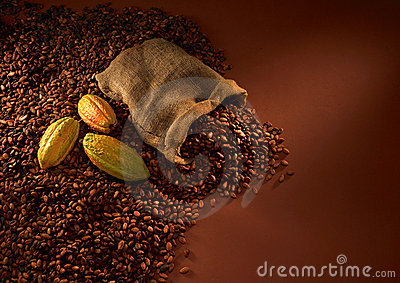 Haricots de chocolat