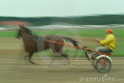 Harness Racer In Motion