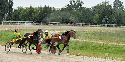 Harness racing 2 Editorial Photography
