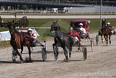 Harness racing-2 Editorial Photo