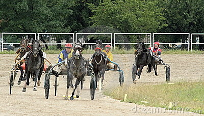 Harness racing 3 Editorial Stock Photo
