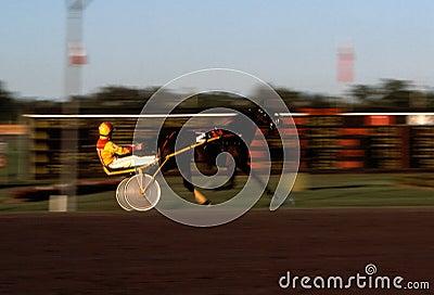 Harness Racing Blur 2