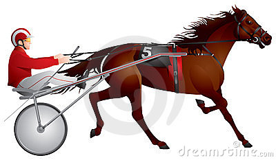 Harness racing, horse, race