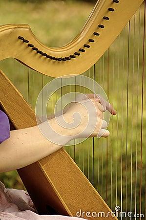 Harp String Harmony
