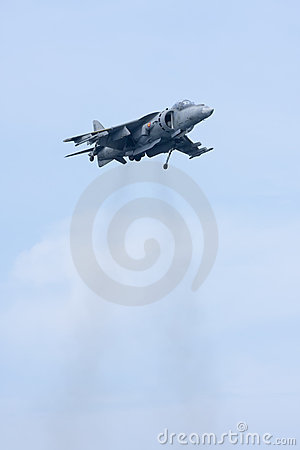 Harrier Editorial Image