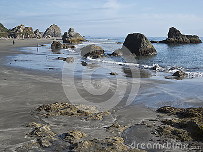 Harris Beach at Brookings, Oregon