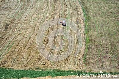 Harvest 02