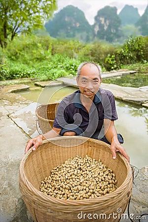 Free Harvest Peanuts Stock Images - 46182734