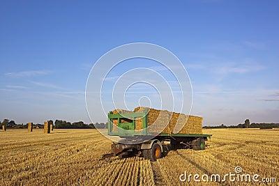 Harvest time trailer
