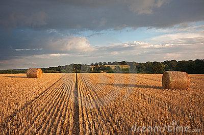Harvested bays of hay under a stormy sunset sky