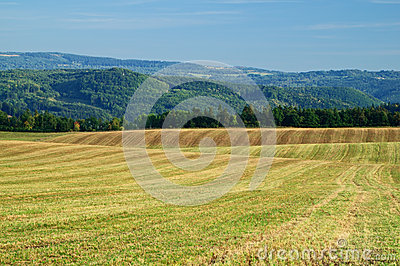 Harvested fields, rolling terrain