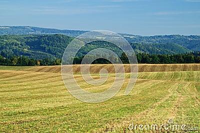 Harvested fields, rolling terrain