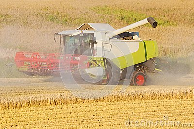 Harvester on a field