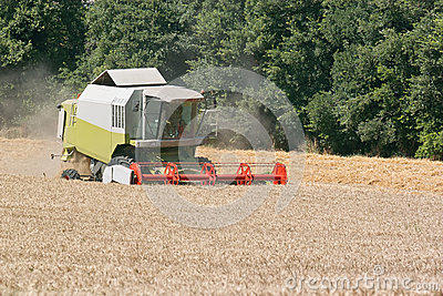 Harvester at work