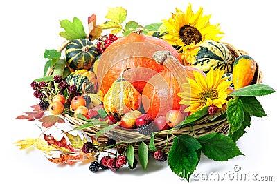 Harvesting arrangement of pumpkins