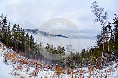 Harz mountains in winter, fisheye view