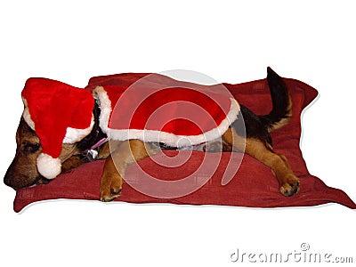 Has Santa been yet