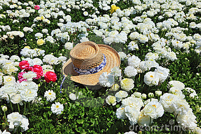 The hat and  flowers
