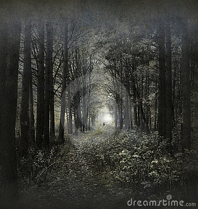 Free Haunted Forest Stock Photography - 21844302