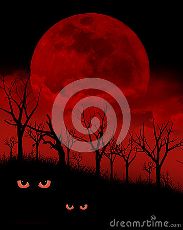 Haunted Forest Royalty Free Stock Images Image 33490359