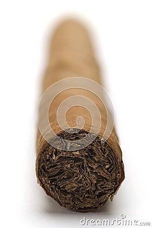 Havana Cigar macro
