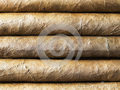 Havana cigars bacground nearest