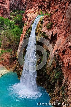 Free Havasu Falls, Natural Paradise In The Grand Canyon Royalty Free Stock Photo - 55938905