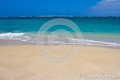 Hawaii Beach Paradise Vacation