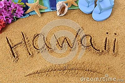 Business plan writers hawaii