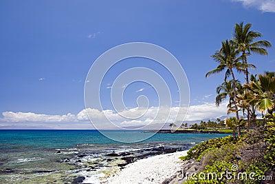 Hawaii Heavenly Beach