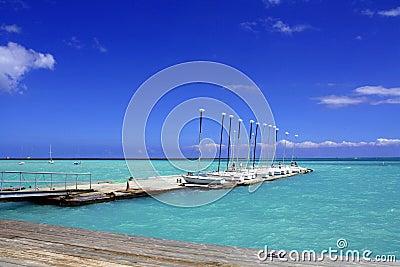 Hawaii Marina