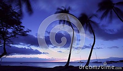 Hawaii at sunset
