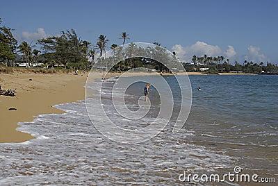 HAWAII_USA_Kapa a Beqch Park Editorial Photography