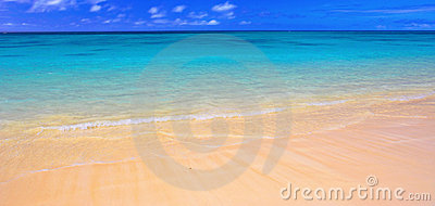 Hawaiian Beach - Oahu