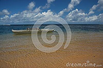 Hawaiian Canoe in Paradise
